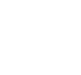 Theiss UAV Solutions, LLC